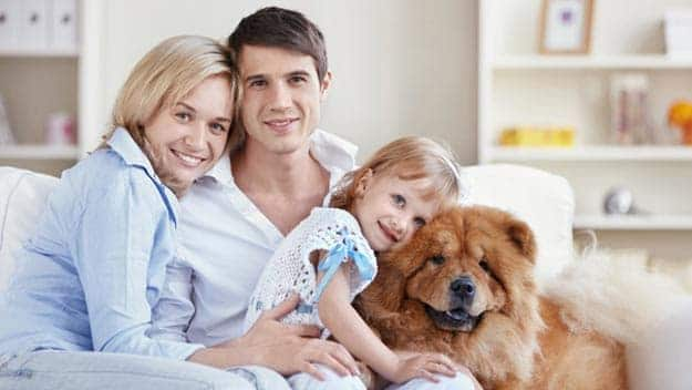 Wills & Trusts dog-young-family Direct Wills Leytonstone